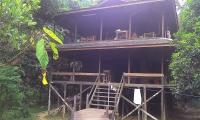 Jungle Lodge Kutai Park.jpg