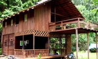 Wehea-Jungle-Lodge.jpg